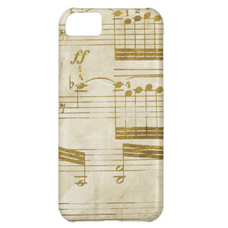 music lovers cleft note cases iPhone 5C case