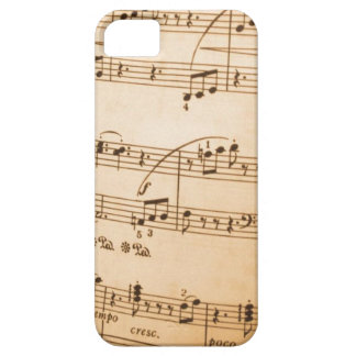 Music Notes Case For The iPhone 5