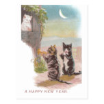 Musical Cats Play for Kitty Vintage New Year Post Cards