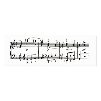 Musical Notes Profile Card Pack Of Skinny Business Cards