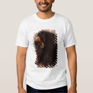 muskox, Ovibos moschatus, cow on the central Tshirts