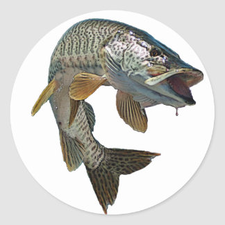 Musky hunter 7 classic round sticker