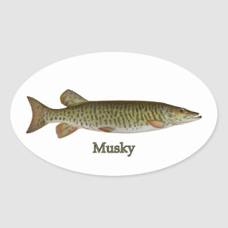 Musky (muskellunge) oval sticker
