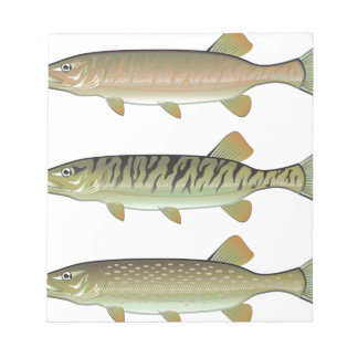 Musky Tiger musky and Northern Pike vector Notepad