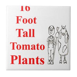 Must Read Best Vegetable Gardening Bible Raised Ceramic Tile