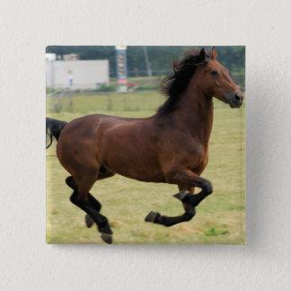 Mustang Galloping Button