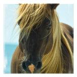 Mustang Horse Invitation