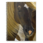 Mustang Horse Photo Notebook