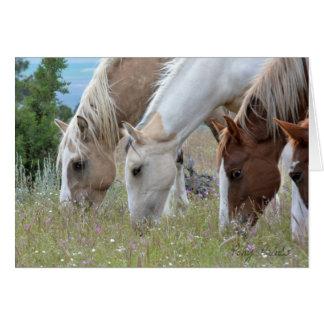 Mustang Stallion Chrome Card