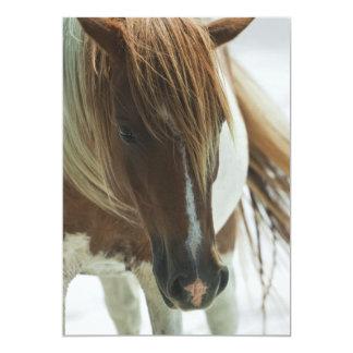 Mustang Wild Horse Invitation