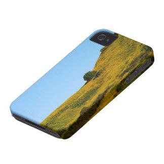 Mustard Grass iPhone 4 Case