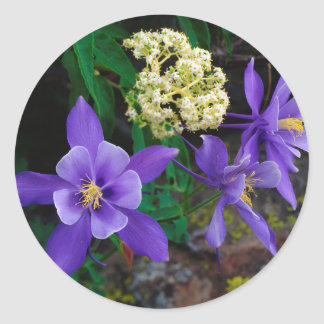 Mutant Columbine Wildflowers Classic Round Sticker