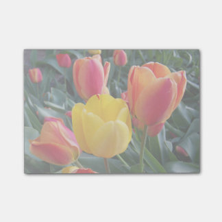 Mute Colors in Your Own Photo Post-it Notes