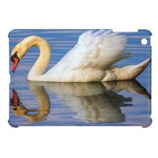 Mute swan, cygnus olor iPad mini case