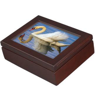 Mute swan, cygnus olor keepsake box