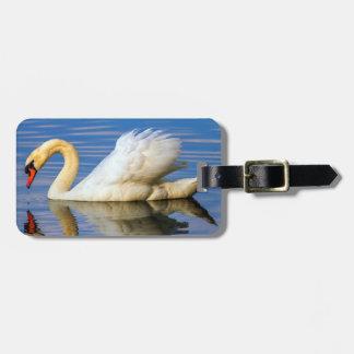 Mute swan, cygnus olor luggage tag