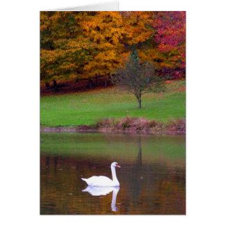 Mute Swan in Autumn Card