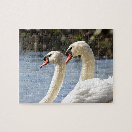 Mute swan pair jigsaw puzzle