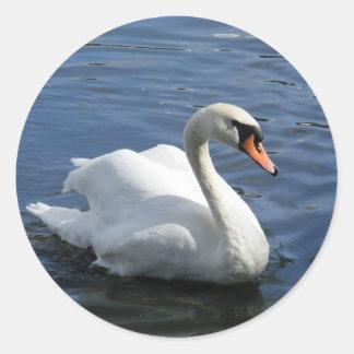 Mute Swan Sticker