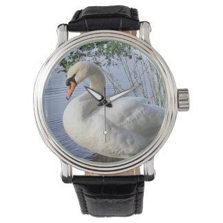 Mute Swan Wristwatch