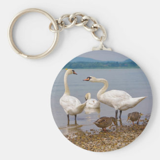 Mute swans and ducks basic round button key ring