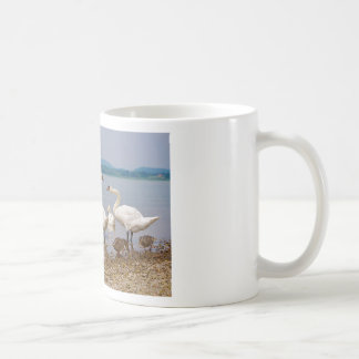 Mute swans and ducks coffee mug
