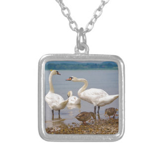 Mute swans and ducks silver plated necklace