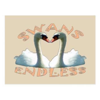 Mute Swans Endless Postcard