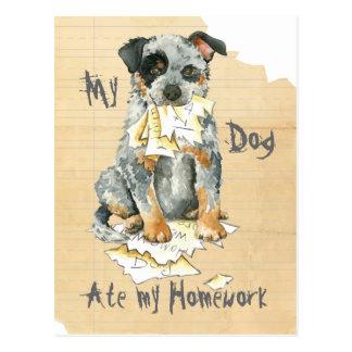 My ACD Ate My Homework Postcard
