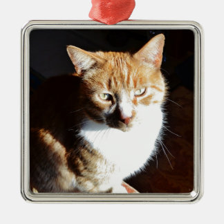 My Affectionate Look Nutmeg. Silver-Colored Square Decoration