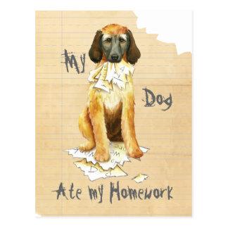My Afghan Hound Ate my Homework Postcard