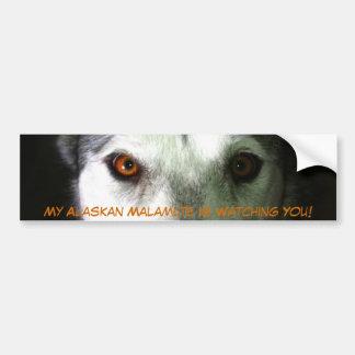 My Alaskan Malamute Bumper Sticker