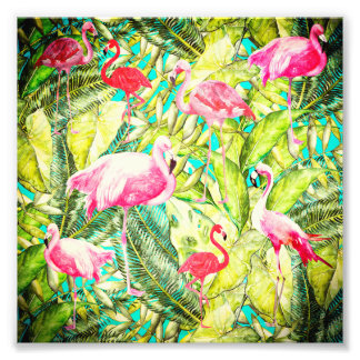 My Aloha Jungle Bird Flamingo Garden Photo Print