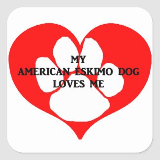 my american eskimo loves me square sticker