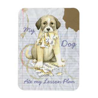 My Anatolian Ate My Lesson Plan Magnet