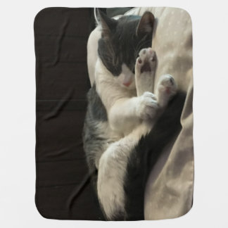 My Baby Binx Sound A Sleep On His Favorite Pillow! Baby Blanket