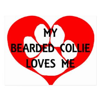 my bearded collie loves me postcard