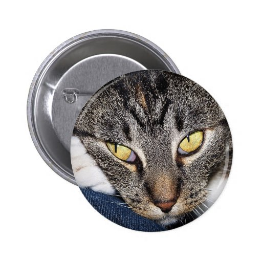 My Best Friend Cat Button