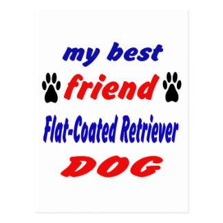 My best friend Flat-Coated Retriever Dog Postcard