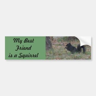 My Best friend is a Squirrel Bumper Sticker