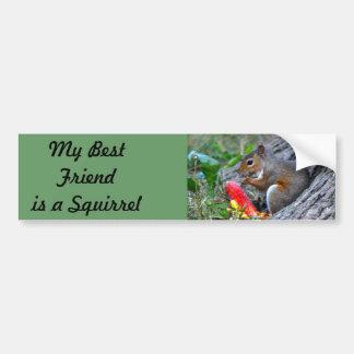 My Best friend is a Squirrel  III Bumper Sticker