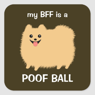 My BFF is a Poof Ball (Fluffy Pomeranian) Square Sticker