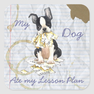 My Boston Terrier Ate My Lesson Plan Square Sticker