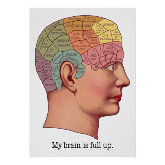 My Brain is Full Up Poster