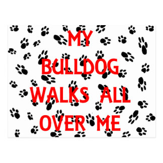 my bulldog walks on me postcard