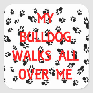 my bulldog walks on me square sticker