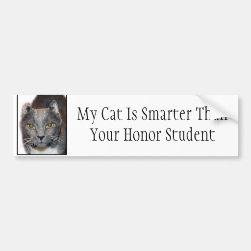 My cat is smarter than your honor student bumper sticker