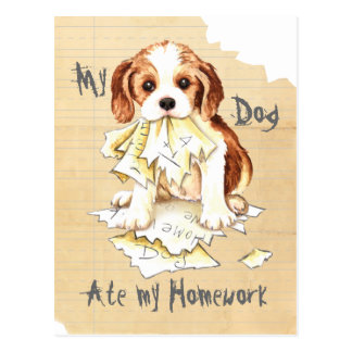 My Cavalier Ate My Homework Postcard