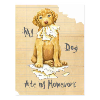 My Chessie Ate My Homework Postcard