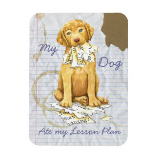 My Chessie Ate My Lesson Plan Magnet